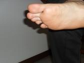 cockfoot