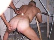 slavedogcd