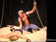 CBT Muscle stud bottom's balls stomped.